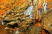 Waterfall In The Appalachian Mountains In The Autumn. Photograph