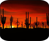 Arizona Sunset Desert