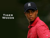 Tiger Woods 8 x 10 Photo