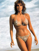 Raquel Welch Wow 8 x 10 Photo