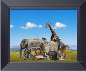 Wild African Animals Photo Collage