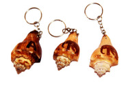 """Lina"" Clam Key Tags, Elephant Decorated - Set of 5"