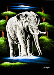 Loner Elephant in the Woods at Night