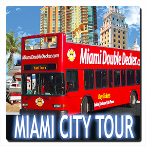 miami-city-tour-.png
