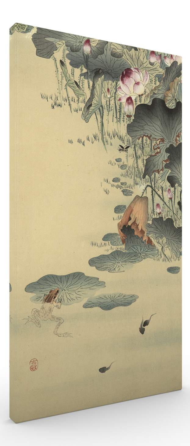 Frog and Frogs by Ohara Koson Japanese Woodblock