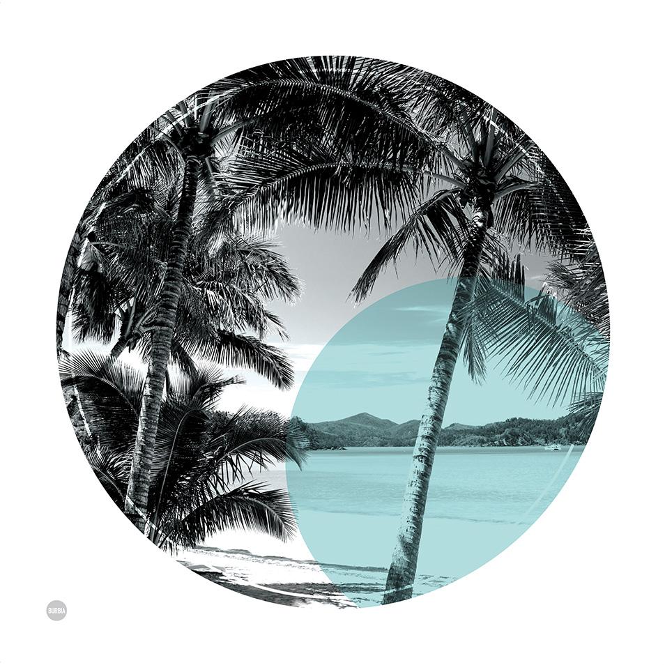 500x500-palmcove-deb1.jpg