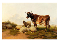 Thomas Sydney - Cooper Sheep and Cows in the Meadow