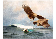 Bruno Liljefors - White Tailed Eagles Hunting