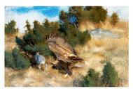 Bruno Liljefors - Eagle Hunting Hare