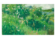 Karl Nordstrom - Briar Rose Bushes Flowering on the Isle of Tjorn