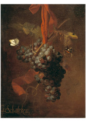 Godfried Schalcken - Bunch of Grapes