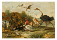 Jan van Kessel - Battle between Owls and Quadrupeds
