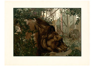 Charles Maurice Detmold - Baloo in the Forest