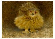 Bruno Liljefors - An Eagle Owl