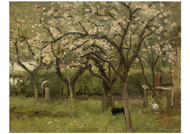 George Poggenbeek - An Orchard in Bloom