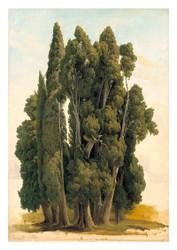 Gustaf Wilhelm Palm - Cypresses
