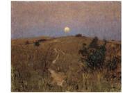 David Davies - Moonrise