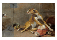 Frans Snyders - Dogs Fighting over a Flayed Oxs Head