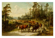 Nils Andersson - Driving Cattle in Smaland