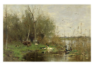 Geo Poggenbeek - Ducks Beside a Duck Shelter on a Ditch