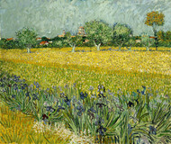 Field with Flowers near Arles by Vincent van Gogh Premium Giclee