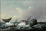 Maritime Art - The Flurry by William Duke, Whaling Print
