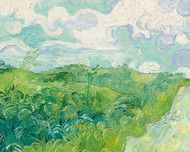Green Wheat Fields, Auvers 1890 by Vincent van Gogh