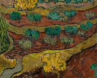 Olive Trees on a Hillside by Vincent van Gogh