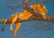 Lioness Sleeping by Lori Watson African Art
