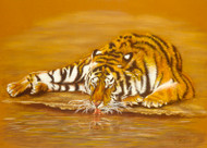 Tiger Drinking by Lori Watson African Art