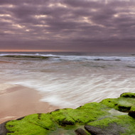 Seascape Print Turimetta 73 by Jeff Grant