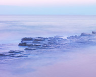 Turimetta 47 by Jeff Grant Seascape Print