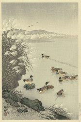 Japanese Print Ducks in the Water by Watanabe Shozaburo
