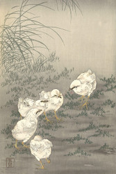 Japanese Print Five Chicks by Ohara Koson b Wildlife