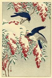 Japanese Print Fly On A Nandinastruik by Watanabe Shozaburo B Art