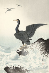 Japanese Print Red Mask Cormorant On Rock by Ohara Koson Art