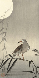 Bird on Bamboo by Ohara Koson Japanese Woodblock