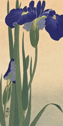 Blue Irises by Anonymous Japanese Woodblock