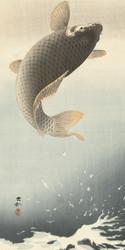 Carp by Ohara Koson Japanese Woodblock