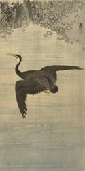 Cormorant by Ohara Koson Japanese Woodblock