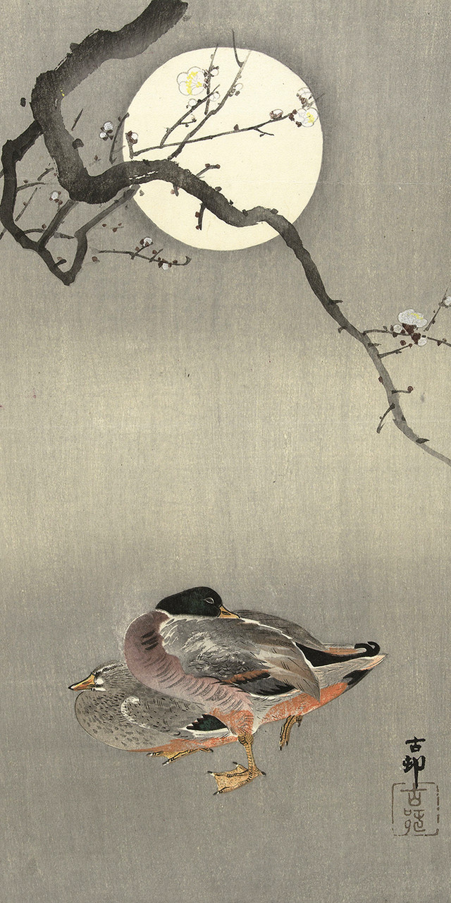 Japanese Reproduction Woodblock Print Ducks #2 Ohara Koson on Parchment Paper.