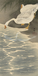Geese On the Shore by Ohara Koson Japanese Woodblock