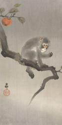 Monkey in Khaki by Ohara Koson Japanese Woodblock