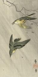 Songbirds in Rain by Ohara Koson Akiyama Buemon Japanese Woodblock