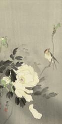 Swallow with Peony by Ohara Koson and Matsuki Heikichi 1900 1930 Japanese Woodblock