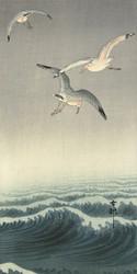 Three Seagulls by Ohara Koson 1900 1936 Japanese Woodblock