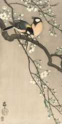 Tits on Cherry Branch by Ohara Koson 1900 1910 Japanese Woodblock
