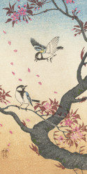 Two Birds at Blossoming Tree by Ohara Koson and Watanabe Shozaburo 1925 1936 Japanese Woodblock