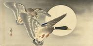 Two Ducks at Full Moon by Ohara Koson Japanese Woodblock