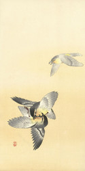 Two Fighting Birds by Ohara Koson 1900 1936 Japanese Woodblock